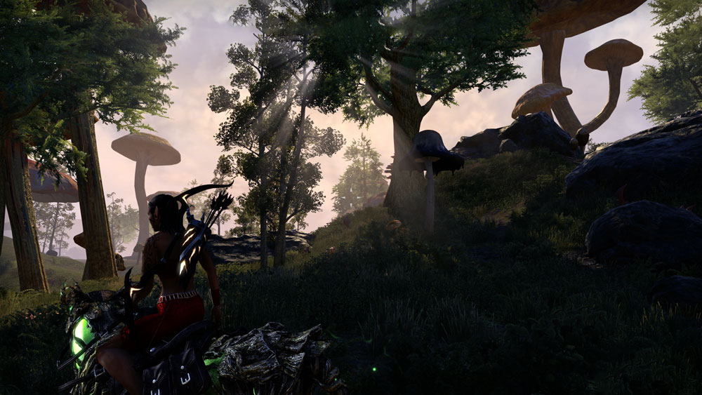 The Elder Scrolls Online Morrowind Review
